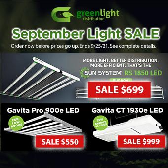 September Light Sale